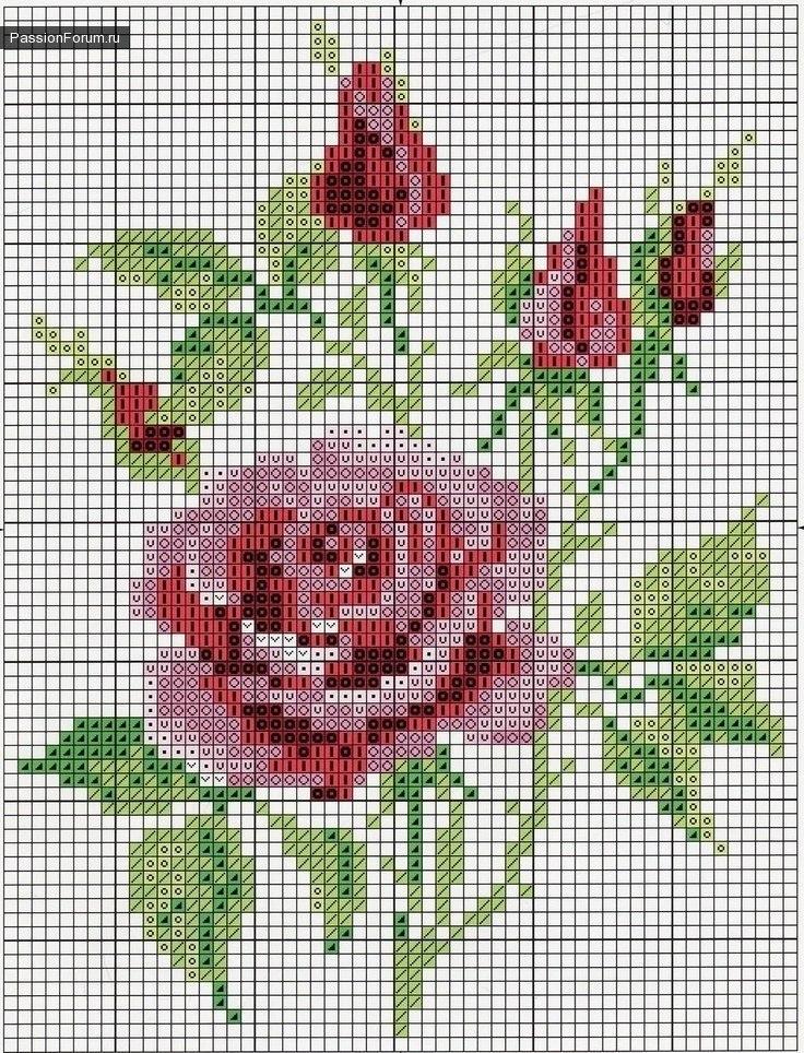 9 moldes de rosas en punto de cruz04